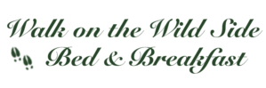 Things to Do, A Walk on the Wild Side B&B