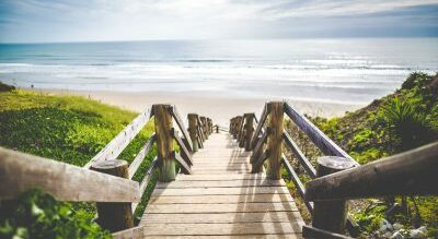 Resort Amenities, A Walk on the Wild Side B&B